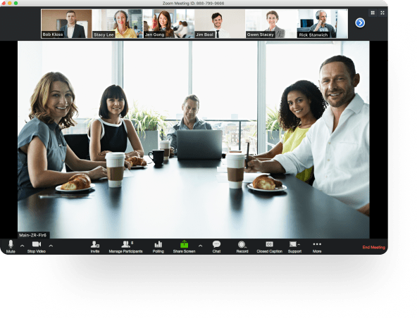 What Zoom meetings look like