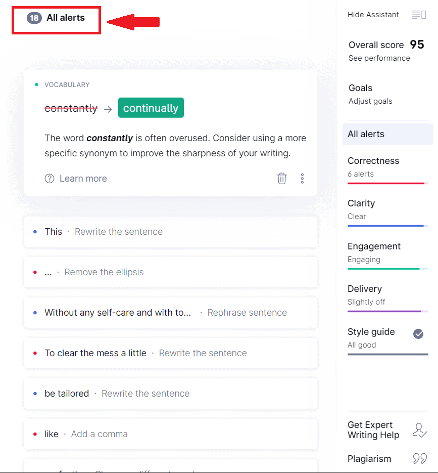 Grammarly identified issues