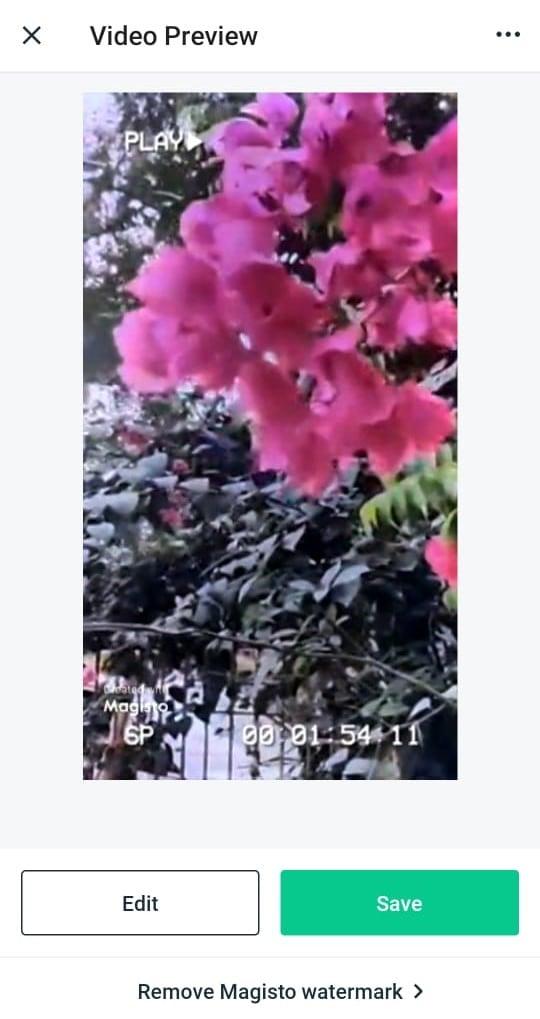 Apple Clips Video Editing App