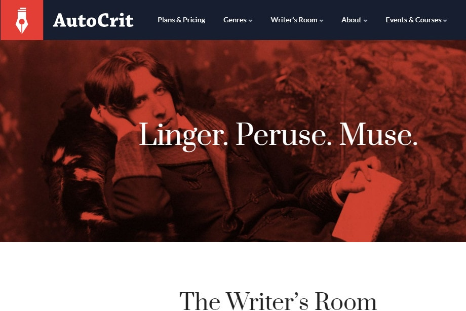 Look of the AutoCrit website